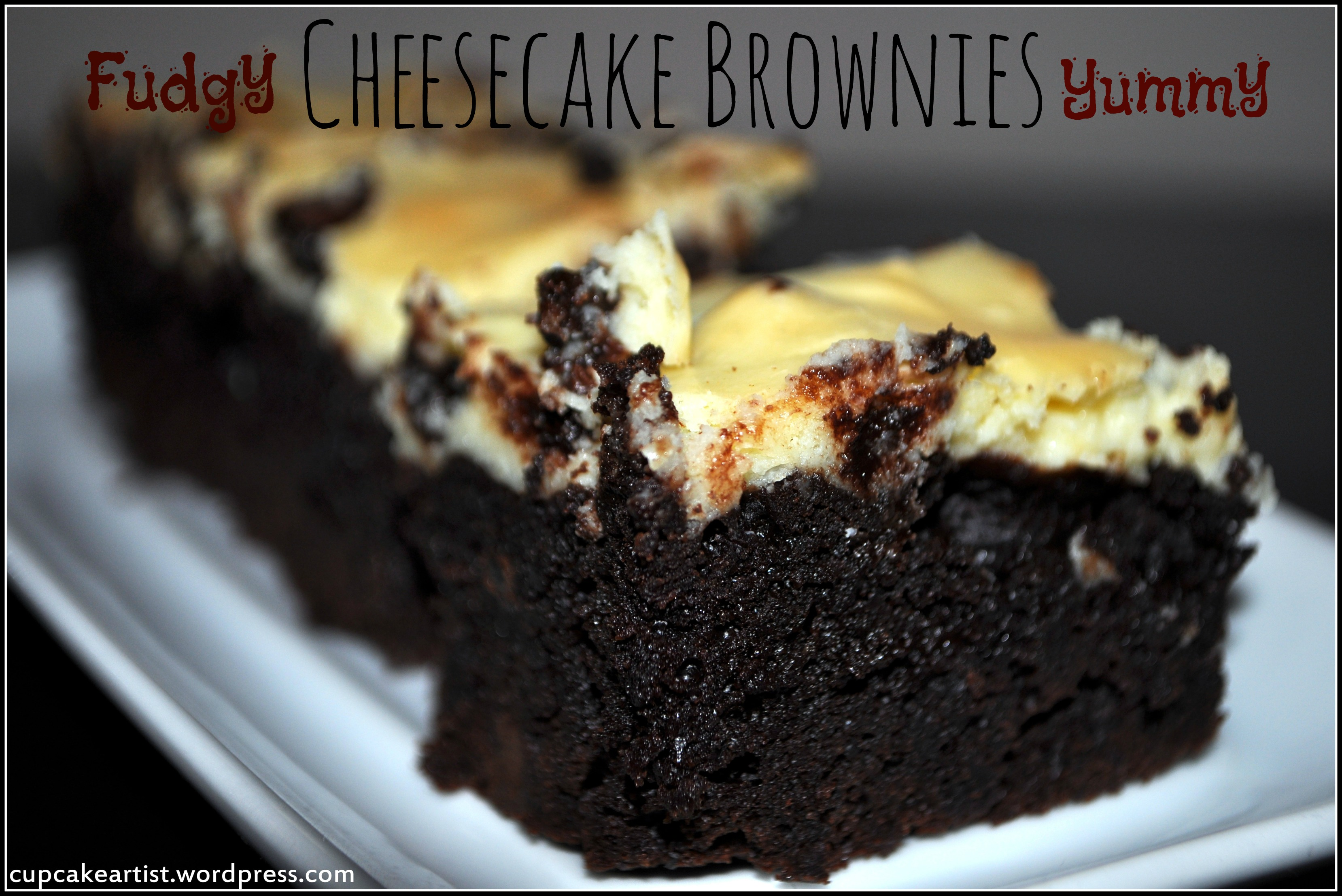 Fudgy Cheesecake Brownies with Chocolate Chips Cupcake Artist